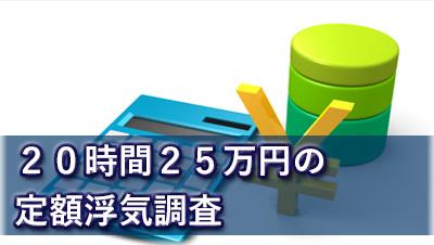 探偵名古屋 浮気調査名古屋 20時間25万円の定額浮気調査